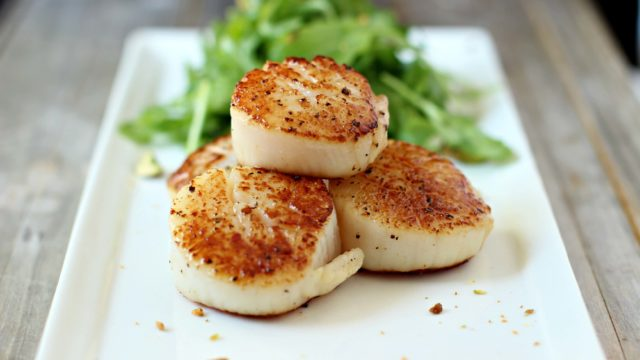 Best Seared Scallops